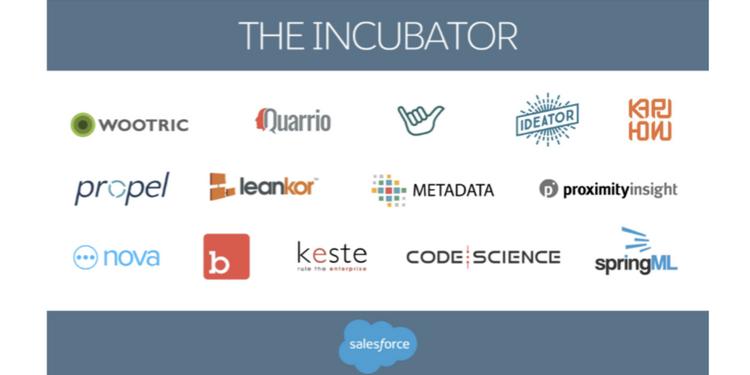 Salesforce Incubator