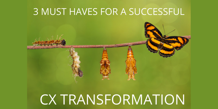 3-MUST-HAVES-for a successful CX Transformation
