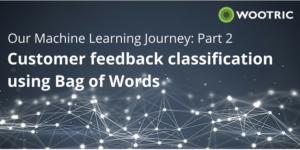 Classifying Cutomer Feedback using Bag of Words